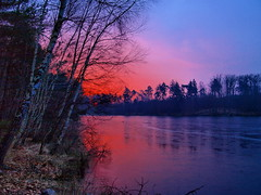 feuerwerk (hlh2108) Tags: blue trees winter red sky sun cold reflection sol nature water sunrise germany landscape atardecer deutschland soleil wasser december laub natur himmel blau dezember 2008 eis landschaft reflexion bume spiegelung soe silvester visualart saarland feuerwerk weiher naturesfinest woog eisig birken supershot morgenrte fineartphotos abigfave anawesomeshot colorphotoaward jgersburg theperfectphotographer goldstaraward vosplusbellesphotos naturescreations