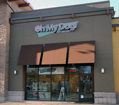 Pet Grooming Eugene Oregon by Oh My Dog!