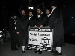 Gaza Peace Rally, Jewish pro-Palistinian group