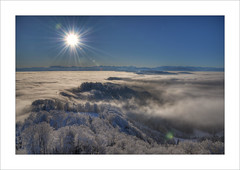G'day! (Toni_V) Tags: blue sky sun mountains alps nature fog backlight landscape schweiz switzerland nikon europe nebel suisse zurich sunday explore uetliberg 2009 hdr cloudscapes d300 nebelmeer albis 5exp capturenx toniv abigfave albiskette hdrsun photomatix30 1685mm 11012009