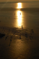Towards the sun (Maarten van den Berg) Tags: winter sun ice netherlands silhouette iceskating skaters littlepeople aalsmeer zon ijs schaatsen longshadow wintershot topdownview reflectingsun westeinderplas vanbovenaf winterinholland2009 nederlandschaatst