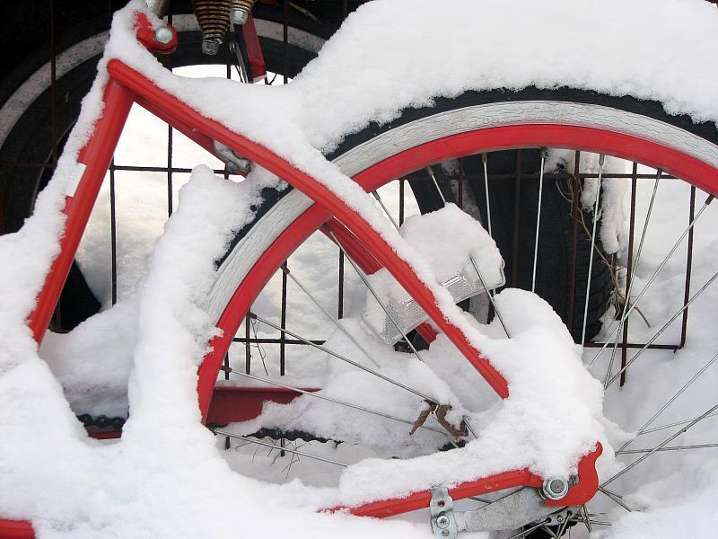 011109 Snowy Day_17
