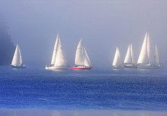 Seven Sailboats Sailing Through the Mist (Peggy Collins) Tags: ocean blue red sea mist canada water misty fog boats bay interestingness sailing searchthebest harbour britishcolumbia foggy explore sailboats penderharbour sunshinecoast beautifulbritishcolumbia mondayblues explorefrontpage anawesomeshot peggycollins thegalleryoffinephotography gettyimagescanada