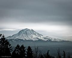 Mt Rainier (by Steve G. Bisig)