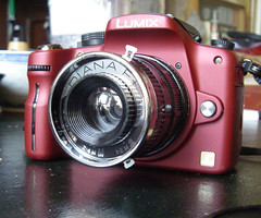 Lumix G1 With Diana+ Lens 3