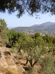 Mallorca 2006 (KarolusLinus) Tags: trees houses sky mountains bomen scenery view valley bergen uitzicht mallorca hemel landschap huizen vallei sognidreams