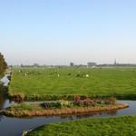 Beemster: Westdijk landscape westbeemster