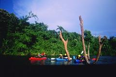 cliff thailand05