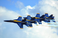 1,2 ... (gatorgalpics) Tags: gainesville explore handheld blueangels gainesvillefl blueribbonwinner gainesvilleairport firstheartoffloridaairshow awsomesight takenwithoutvrlens stateofthearttechnology photocontestcog09 protectingandservingcitizens