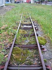 偽鐵軌:p