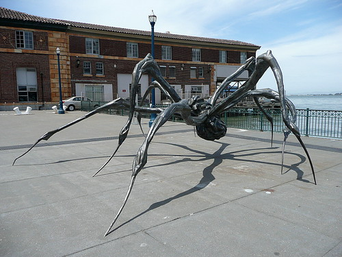 Crouching Spider
