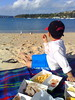 Fish and chips (Rahul Dutta) Tags: sea cloud beach boats sand outdoor seagull sydney sunny australia nsw balmoral fishchips