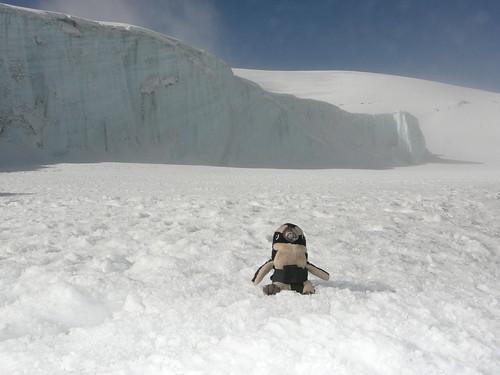 Vista de los Glaciares cerca del Crater del Kilimanjaro