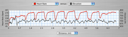 Graph of heart rate and elevation