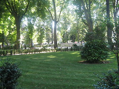 Fontana Piazza Torlonia (S.A.L.) Tags: park trees italy music parco verde green art sex club digital square fun lights cool bush artwork italian funny italia tour magic parking couples prince voyeur villa fields through piazza shrub avenue parc prato luxury voyeurism touring waltz ville though abruzzo italiano italiana magia principe prati aiuole avezzano aiuola marsica abruzzese guardone torlonia marsicano curato avezzanese pratoinglese marsicani marsicane avezzanesi piazzatorlonia