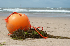 Boei (jan-willem wolf) Tags: holland beach strand nederland noordzee shore northsea buoy noordholland kust boei petten buoyant janwillemwolf