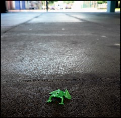 Frogger (Davy Ellis) Tags: street toy frog toon frogger shieldfield