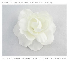 Petite_Classic_Gardenia_Hair_Clip (hairflowers.com) Tags: wedding flower hair cream silk ivory clips flowerhairclip flowerforhair bridalflowerhairclip weddingflowerhair gardeniaflowerforhair