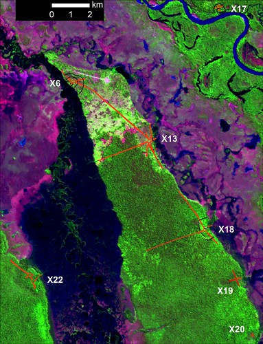 GPS mapped earthworks over Landsat  by PRIs The World.