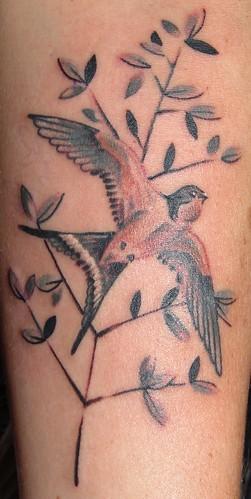 cropped bird.