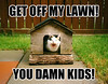 damn-kids-kitty (DiscoWeasel) Tags: get kids cat feline funny lol misc internet humor lawn kitty off meme damn noob wastesometime