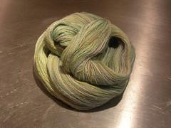 Misti Alpaca Swallowtail