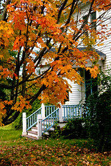 fallcolors (justtakenpictures) Tags: digital canon newengland northeast canond30 30d donalwaites donwaites surfcityphoto