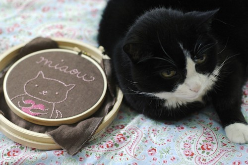 sweet little old lady kitty with embroidery