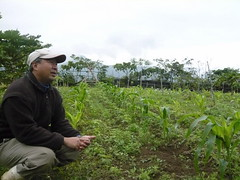 台東夏耘自然農莊透過有機種植及直銷合購,與消費者直接建立關係。