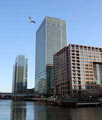Morgan Stanley & Lehman Brothers Buildings, Canary Wharf, London.