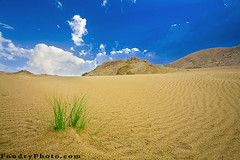 Beauty Of Desert (A.alFoudry) Tags: blue winter sky cloud white mountain cold green grass lines rain rock clouds canon eos high rocks alone desert wind curves north deep line full frame 5d after desierto kuwait usm fullframe sands curve ef 1740mm canonef1740mmf4lusm afterrain  kuwaiti q8 abdullah   f4l canoneos5d   sabbeya kuw q80 nonhdr kathma  xnuzha alfoudry  abdullahalfoudry  nonehdr foudryphotocom