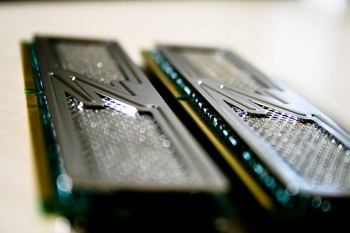 OCZ 2GB DDR2 RAM (Close)