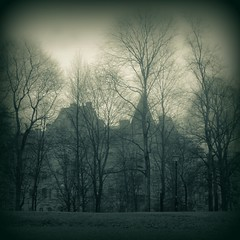 De dimmiga dagarna / Foggy days (gothicburg) Tags: rain fog gteborg square gothenburg greenish lightroom foggydays kungsparken parkgatan dedimmigadagarna grnaktig