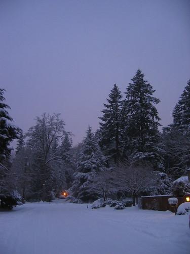 Dawn, Dec 24