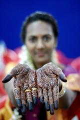 Sangeeta's Mehndi...