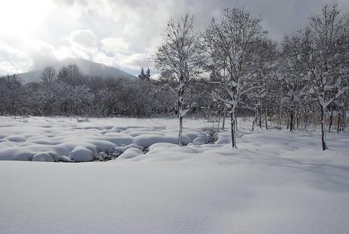 20090103019雪湿地