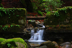 Swanson Creek (the_tahoe_guy) Tags: california park longexposure travel pink blue trees red wallpaper vacation favorite usa tree green nature water beautiful northerncalifornia rock cr