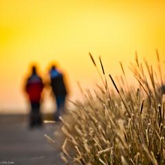Sunrise (Bluemonkey08) Tags: sunrise newcastle australia nsw d90 ericlam nikond90 stocktonbreakwater bluemonkey08 tamron18270mmf3563diiivcpzd