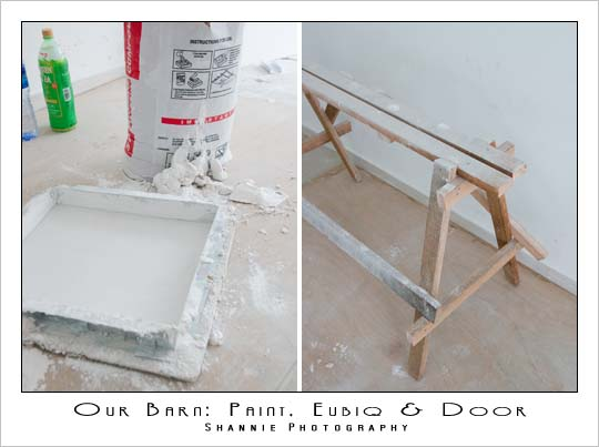 Piggeek Barn : Paint, Eubiq and Doors!