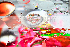 A dash of color. (TristanDuplichainPhotography) Tags: lighting camera pink school light red portrait orange white abstract color macro reflection green art love college water glass colors yellow photoshop work canon project circle studio lens photography grey photo drops cool eyes colorful paint flickr different image unique awesome flash gray assignment creative bubbles headshot fantasy photog
