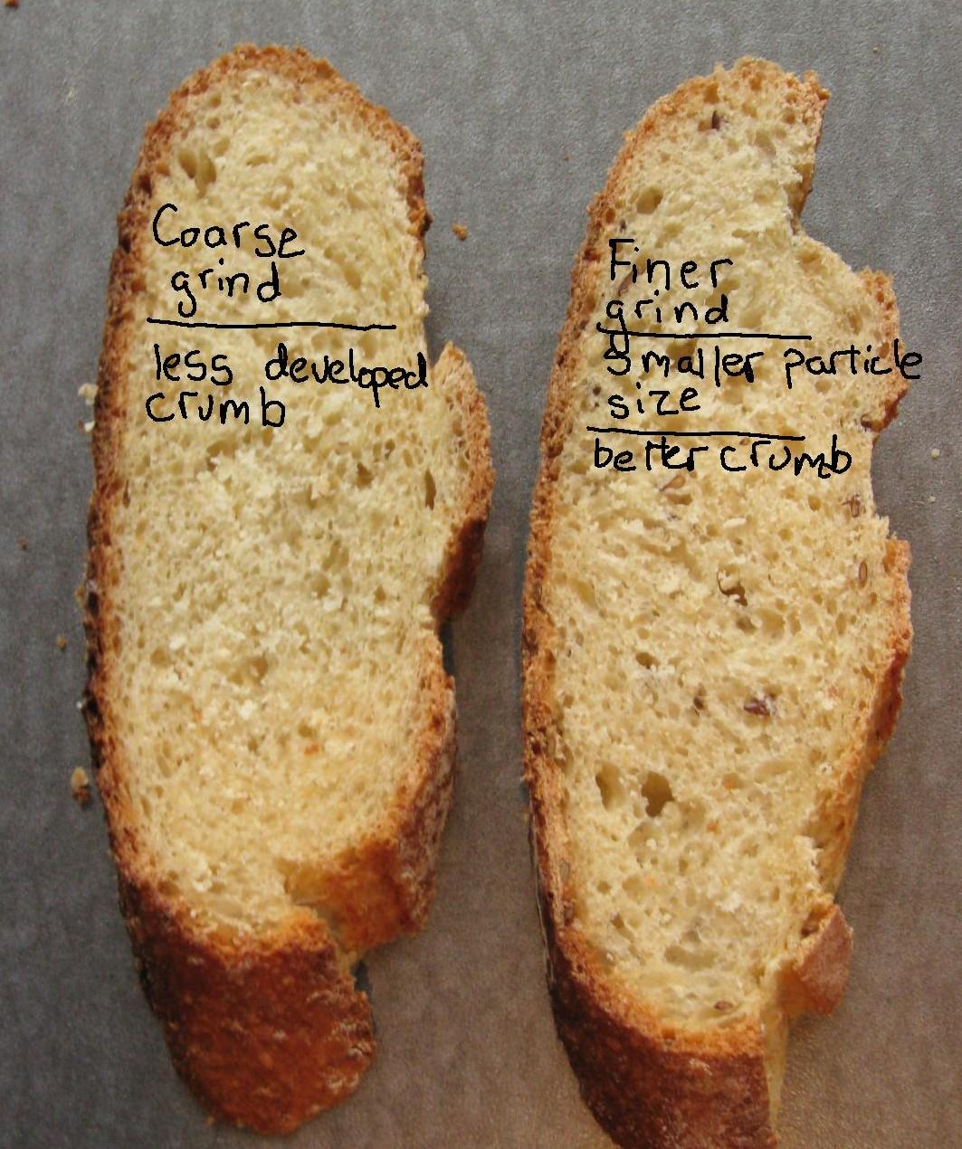 Flour particle size expt.