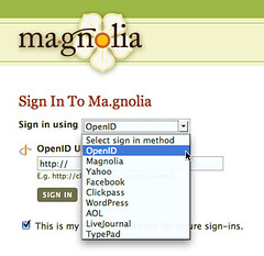 Ma.gnolia.com - sign in Options