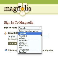 Ma.gnolia.com - sign in Options