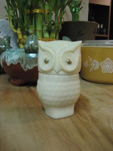 Avon Owl 2