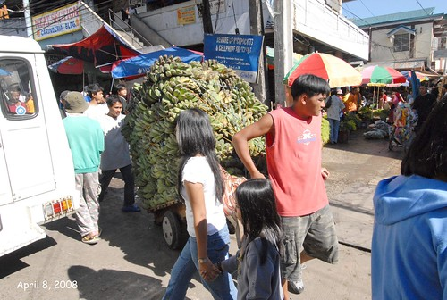 man transporting green bananas in busy Baguio market street trolley Buhay Pinoy Philippines Filipino Pilipino  people pictures photos life Philippinen   session road
