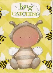 Bug Catching