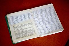 Journal intime n°10 (32 à 52 ans)