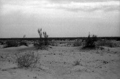 The ex-Aral Sea (Kryss118) Tags: sea ecology nikon desert ships 85mm f100 disaster uzbekistan aral karakalpakstan muynak