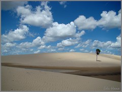 Dunas - Cabure MA (eduhhz) Tags: dunes dune cy gy cabure challengeyouwinner duetos gpsyncr a577