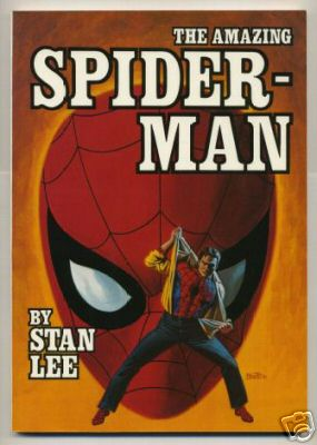 msh_tpb_spidermanfireside.JPG